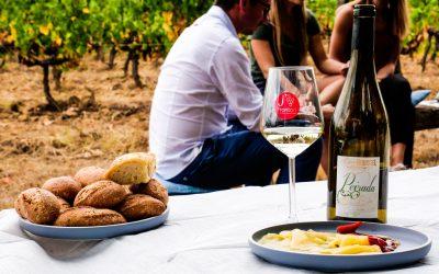 Secrets du Sud-Ouest, de vins en découvertes #1 : l'AOP Fronton