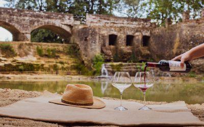Secrets du Sud-Ouest, de vins en découvertes #4 : l'IGP Lavilledieu