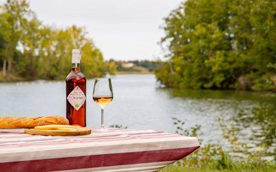 Secrets du Sud-Ouest, de vins en découvertes #2 : l'AOP Saint-Sardos